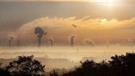 La necesidad de preservar el medioambiente para evitar pandemias
