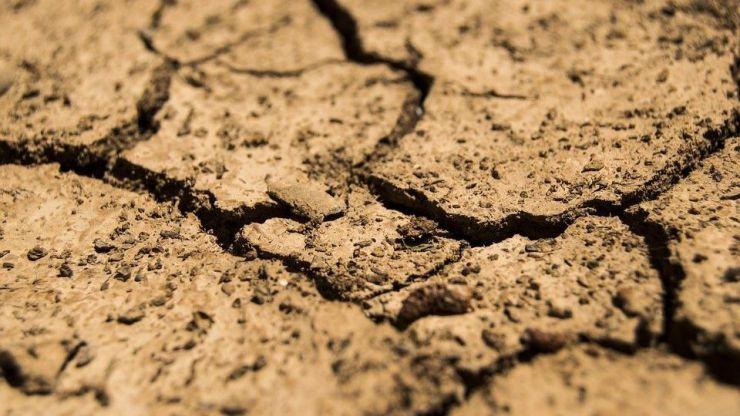 Cambio Climático: Hacia las sequías y el ascenso de las temperaturas en América del Sur