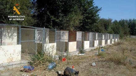 Dos detenidos por la muerte y el maltrato de los perros de la residencia canina de Madrid