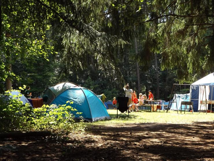 Casi medio millar de jóvenes disfrutan de los campamentos de verano organizados por el IVAJ