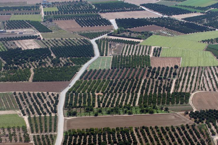 Los agricultores valencianos están entre los primeros en recibir el adelanto de los pagos directos de la PAC 2018