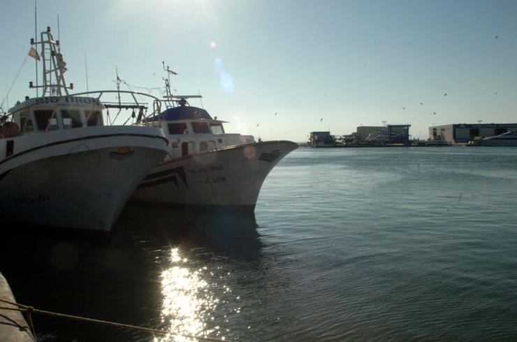 7,9 millones de euros para la modernización de los puertos pesqueros de la Comunitat
