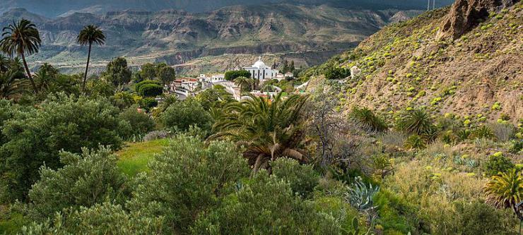 Heridos dos menores tras ser apuñalados en Gran Canaria