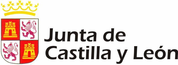 La Junta de Castilla y León publica una nueva convocatoria de ayudas para reducción de jornada y excedencia
