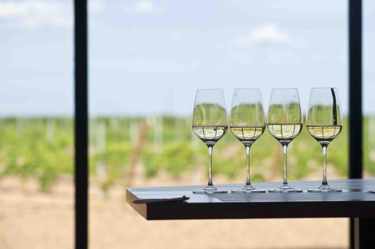 La Junta presenta más de 60 actividades de la Semana Europea del Enoturismo bajo la nueva imagen Rutas del Vino Castilla y León